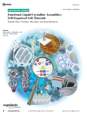 Angew. Chem. Int. Ed. Cover Image