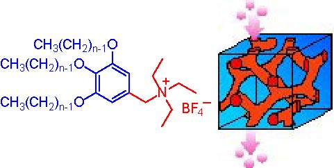 3 イオン伝導性液晶